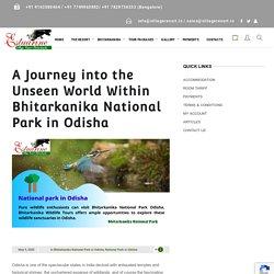 Bhitarkanika National Park in Odisha - Estuarine Village Resort