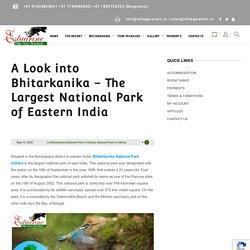 A Look into Bhitarkanika – The Largest National Park of Eastern India - Estuarine Village Resort