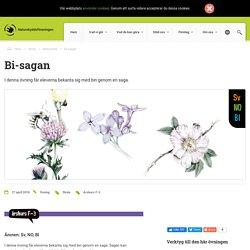 Bi-sagan