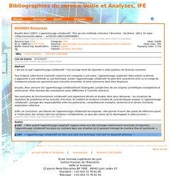 Bibliographies du service Veille et Analyses, IFÉ