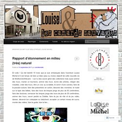 Louise et les canards sauvages - blog bibliothèque Louise Michel Paris
