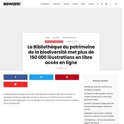 histoire naturelle : plus de 150 000 illustrations en libre accès en ligne