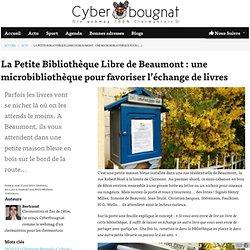 Clermont-Ferrand, ma ville au quotidien, ma ville comme je l'aime - Cyberbougnat