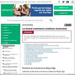 Bibliothèque virtuelle Le Grand commerce (notions avancées)