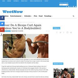 Never Do A Biceps Curl Again (Unless You're A Bodybuilder) - WeetNow