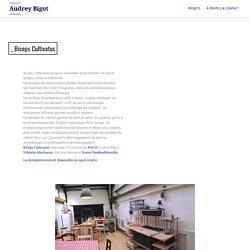 _ Biceps Cultivatus – Audrey Bigot
