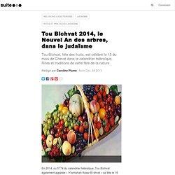 Tou Bichvat 2012, le Nouvel An des arbres, dans le judaïsme