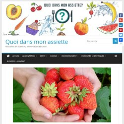 Bicopoll Project : remplacer les pesticides par les abeilles pour protéger les cultures de fraises BIO – Quoi dans mon assiette