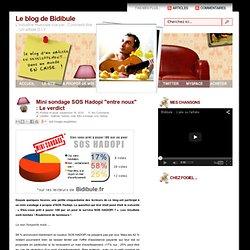 """Mini sondage SOS Hadopi """"entre noux"""" : Le verdict"""