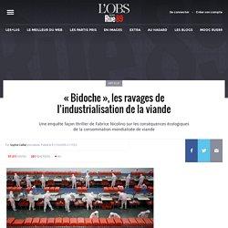 «Bidoche», les ravages de l'industrialisation de la viande