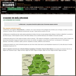 CHASSE BIELORUSSIE RUSSIE : Passions Nature Belarus