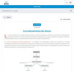 BiEn - Les mécanismes du stress