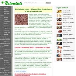Bienfaits du cumin - 10 propriétés du cumin vrai et des graines de carvi
