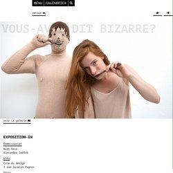 Biennale Internationale Design Saint-Etienne 2015 - Vous-avez dit bizarre?