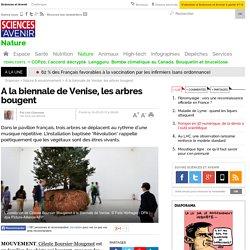 A la biennale de Venise, les arbres bougent