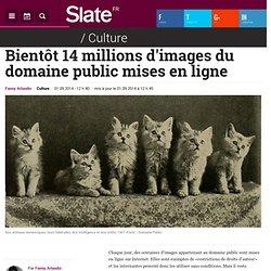 Bientôt 14 millions d'images du domaine public mises en ligne