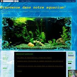 Bienvenue dans notre aquarium!: TRUCS ET ASTUCES