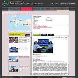 Bienvenue sur le portail officiel du tourisme en Presqu'île de Crozon - Finistère - Bretagne » Miels d'Armorique