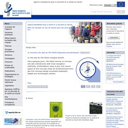 European Agency for Safety & Health at Work - Information, statistics, legislation and risk assessment tools.