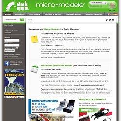 Bienvenue sur le site micro-modele