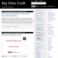 Big Data Craft