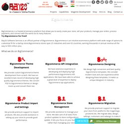 A Quality Provider of Bigcommerce Development, Bigcommerce Customization Service