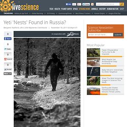 Yeti 'Nests' Found in Russia?