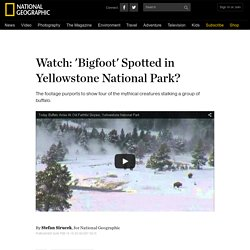 news.nationalgeographic