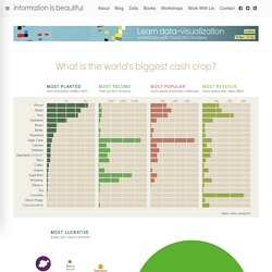 What is the World's Biggest Cash Crop? — Information is Beautiful