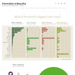 What is the World's Biggest Cash Crop?