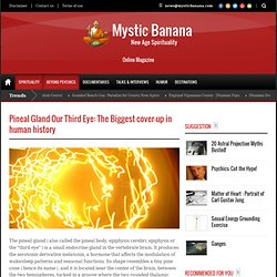 Pineal Gland Our Third Eye: The Biggest cover-up in human history | Mystic Banana - New Age Spirituality Magazine