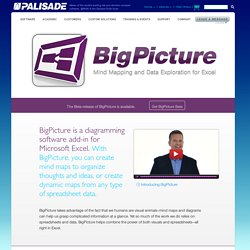 BigPicture: Mind Mapping and Data Exploration for Microsoft Excel - Palisade