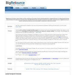 BigResource: Webmaster Scripts & Tutorials Directory