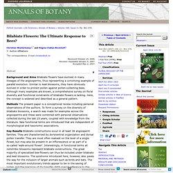 Bilabiate Flowers: The Ultimate Response to Bees?