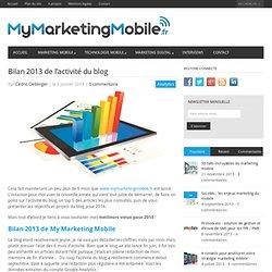 Bilan 2013 de l'activité du blog