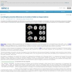 Los bilingües presentan diferencias en el cerebro al hablar su lengua materna / Noticias / SINC - Agencia SINC