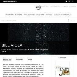 Bill VIOLA - Rétrospective Grand Palais (05 Mars à 21 Juillet 2014)