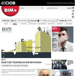 BIM+ - Don't get trapped in the BIM chasm
