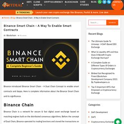 What is Binance Smart Chain (BSC) ? - A Complete Guide
