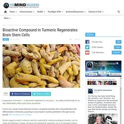 Bioactive Compound in Turmeric Regenerates Brain Stem Cells