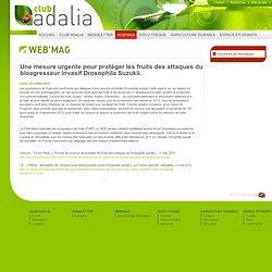 CLUB ADALIA 02/07/12 Une mesure urgente pour protéger les fruits des attaques du bioagresseur invasif Drosophila Suzukii.