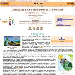 Biocarburant, algocarburant, microalgue, éthanol, biodiesel