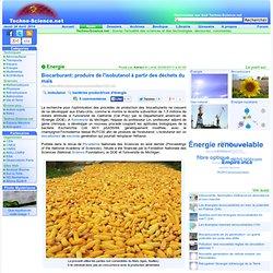 Biocarburant: produire de l'isobutanol à partir des déchets du maïs