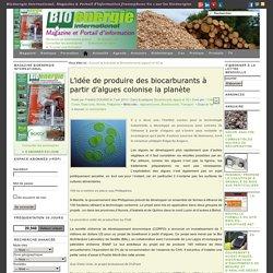 L'idée de produire des biocarburants à partir d'algues colonise la planète