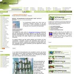 Pollution : les biocarburants ne sont pas aussi « écolo » qu'ils n'y paraissent