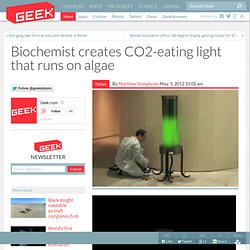 Biochemist creates CO2-eating light that runs on algae