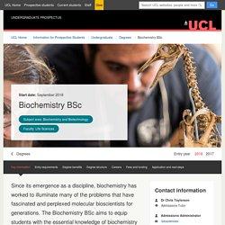 UCL London's Global University