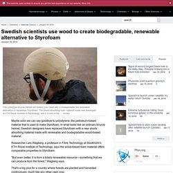 Swedish scientists use wood to create biodegradable, renewable alternative to Styrofoam
