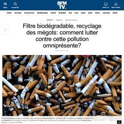 Filtre biodégradable, recyclage des mégots: comment lutter contre cette pollution omniprésente?