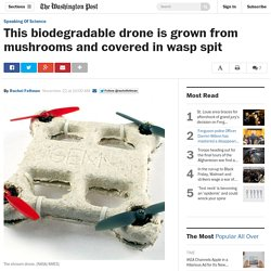 This biodegradable drone is grown from mushrooms and covered in wasp spit